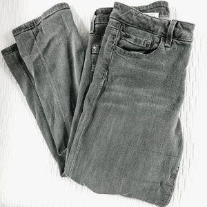 Joe's Jeans The Visionaire Skinny Highwaist | W29